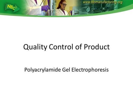Quality Control of Product Polyacrylamide Gel Electrophoresis.