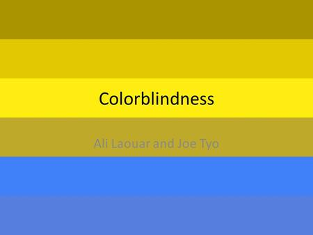 Colorblindness Ali Laouar and Joe Tyo. How does the person inherit it? 1.How does a person inherit it? Most color blindness is heritable, usually as simple.