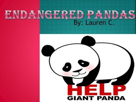 By: Lauren C.. Do you care about pandas? Would you help them if you could?