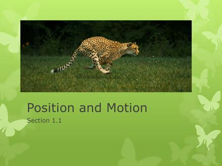 Position and Motion Section 1.1. Position  Position: location of a place or object  Position is described using comparison to another location.  Reference.