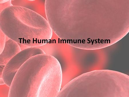 the human immune system and infectious The immune system a second line of defense is housed within the body: a finely tuned immune system that recognizes and destroys foreign substances and organisms.