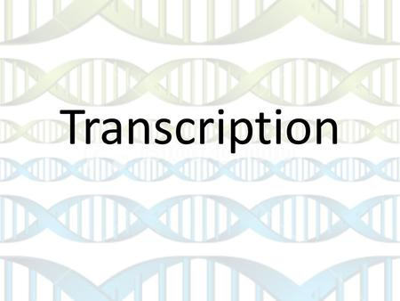 Transcription. Central Dogma of Biology Information flows from DNA  RNA  Proteins Think of it as exchanging money in a different country: proteins cannot.