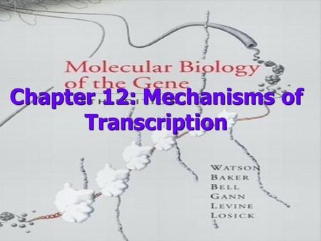 Chapter 12: Mechanisms of Transcription