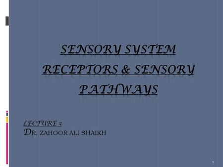LECTURE 3 D R. ZAHOOR ALI SHAIKH 1. Sensory system or Input system  What type of sensation do you know?  Touch  Fine  Crude  Pressure  Position.