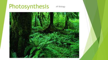 Photosynthesis AP Biology Photosynthesis: Life from Light and Air.
