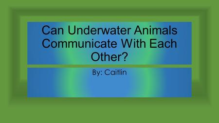 Can Underwater Animals Communicate With Each Other? By: Caitlin.