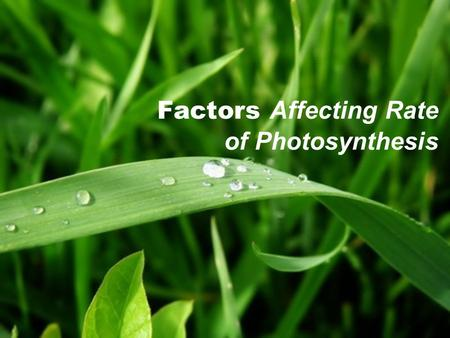 Factors Affecting Rate of Photosynthesis. Let's Recall … What are the factors required for photosynthesis? How do we know if photosynthesis has been carried.