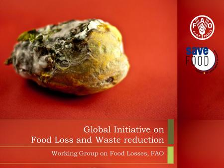 Global Initiative on Food Loss and Waste reduction Working Group on Food Losses, FAO.