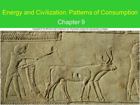 Energy and Civilization: Patterns of Consumption