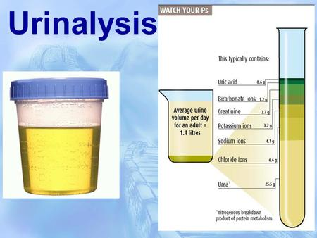 urinalysis. - ppt download, Skeleton