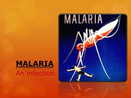MALARIA An infection. Basics:  An infection caused by parasites  Female anopheles mosquitos act as vectors  They transfer this infection from one person.