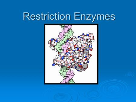 Restriction Enzymes. Discovery  In 1962, Werner Arber, a Swiss biochemist, provided the first evidence for the existence of molecular scissors that.