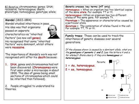 "Mendel (1822-1884) Mendel studied inheritance in peas. His idea was that organisms passed on separate characteristics via ""inherited factors"" (we now call."