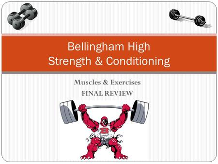 Muscles & Exercises FINAL REVIEW Bellingham High Strength & Conditioning.