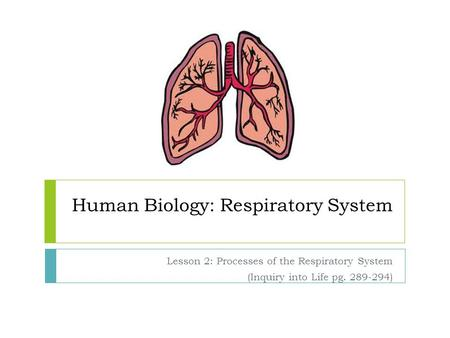 Human Biology: Respiratory System Lesson 2: Processes of the Respiratory System (Inquiry into Life pg. 289-294)
