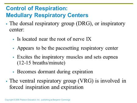 Copyright © 2006 Pearson Education, Inc., publishing as Benjamin Cummings Control of Respiration: Medullary Respiratory Centers  The dorsal respiratory.