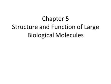 structure and function of large biological The structure and function of large biological molecules overview: the molecules of life • all living things are made up of four classes of large biological.