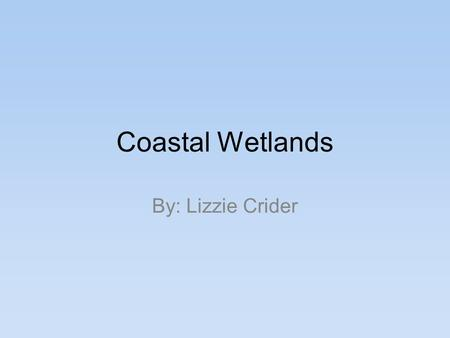 Coastal Wetlands By: Lizzie Crider. Location Transition zones : Both land <strong>and</strong> open water environments- Wetlands have both land <strong>and</strong> water characteristics,