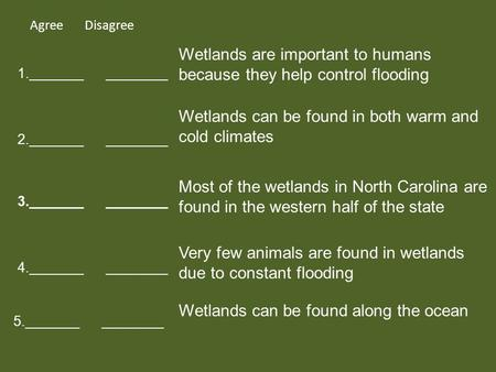 Agree Disagree 1._______ ________ 2._______ ________ 3._______ ________ 5._______ ________ 4._______ ________ Wetlands are important to humans because.