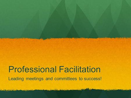 Professional Facilitation Leading meetings and committees to success!