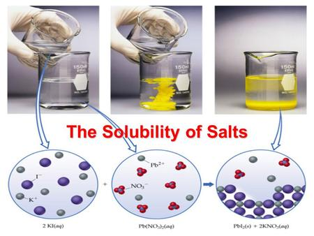 The Solubility of Salts