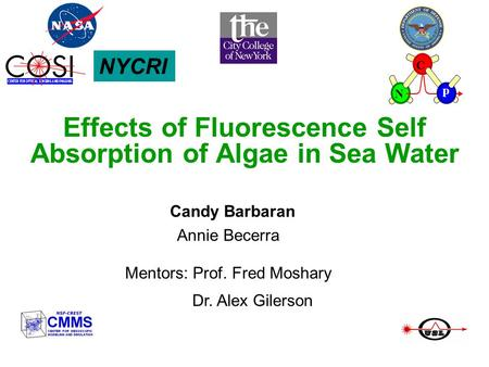 Effects of Fluorescence Self Absorption of Algae in Sea Water Candy Barbaran Annie Becerra Mentors: Prof. Fred Moshary Dr. Alex Gilerson NYCRI C N p.