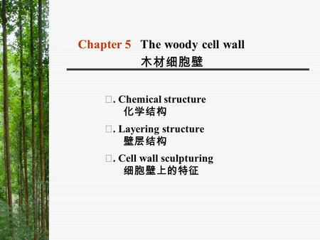 Chapter 5 The woody cell wall 木材细胞壁