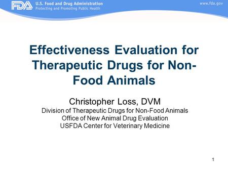 Effectiveness Evaluation for Therapeutic Drugs for Non-Food Animals
