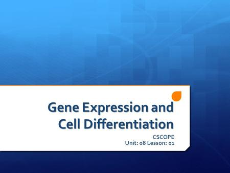 Gene Expression and Cell Differentiation