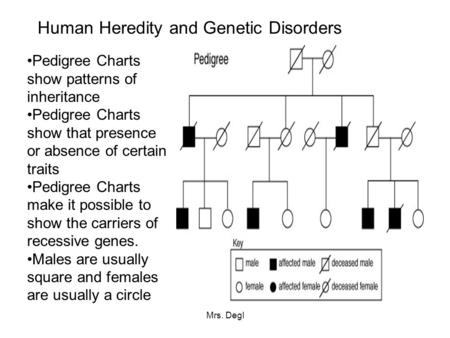 Mrs. Degl Human Heredity and Genetic Disorders Pedigree Charts show patterns of inheritance Pedigree Charts show that presence or absence of certain traits.