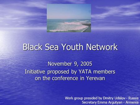 Black Sea Youth Network November 9, 2005 Initiative proposed by YATA members on the conference in Yerevan Work group presided by Dmitry Udalov - Russia.