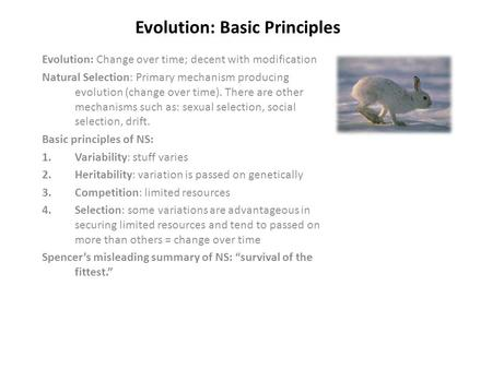 Evolution: Basic Principles Evolution: Change over time; decent with modification Natural Selection: Primary mechanism producing evolution (change over.