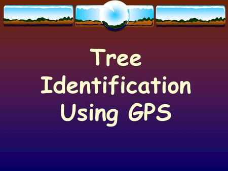 Tree Identification Using GPS.  What is GPS and how does it work? GPS - Global Positioning System.
