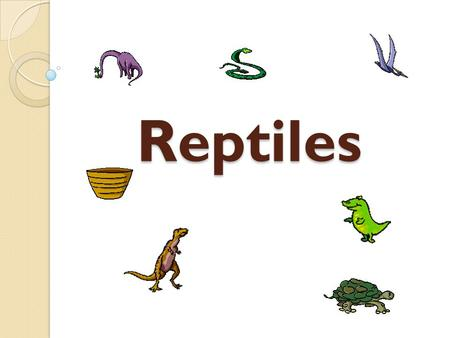 Reptiles. Diversity Diversity Diversity ◦ Found on every continent but Antarctica ◦ Mainly found in tropics and subtropics ◦ Produce some heat  Do not.