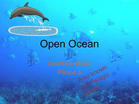 Open Ocean Courtney Wood Period 3 Also known as: Pelagic Zone!