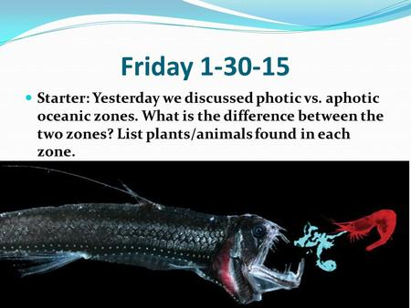 Friday 1-30-15 Starter: Yesterday we discussed photic vs. aphotic oceanic zones. What is the difference between the two zones? List plants/animals found.