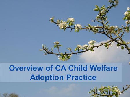 Overview of CA Child Welfare Adoption Practice. Welcome!!!