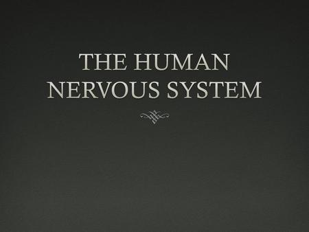 THE HUMAN NERVOUS SYSTEM  THE HUMAN NERVOUS SYSTEM IS BROKEN INTO TWO CATEGORIES  THE CENTRAL NERVOUS SYSTEM (C.N.S) VS.  THE PERIPHERAL NERVOUS SYSTEM.