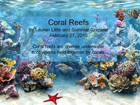 Coral Reefs By Lauren Little and Summer Grimmer February 27, 2015