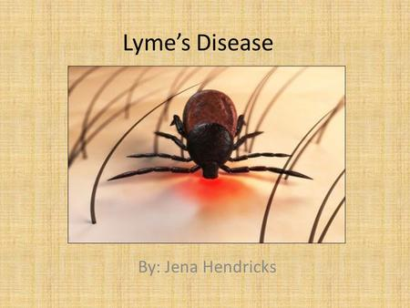 Lyme's Disease By: Jena Hendricks.
