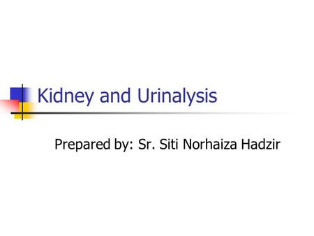 Kidney and Urinalysis Prepared by: Sr. Siti Norhaiza Hadzir.