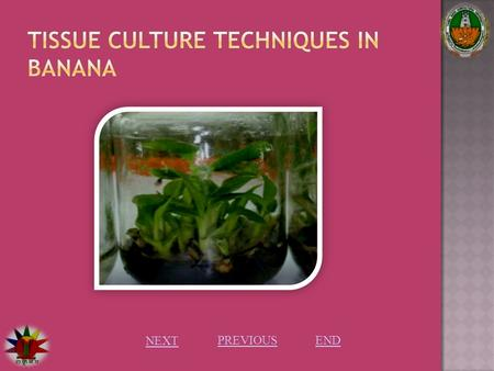 NEXT PREVIOUS END. Introduction: Plant tissue culture: Plant tissue culture is culturing of any part of the plant in a specially defined growth media.