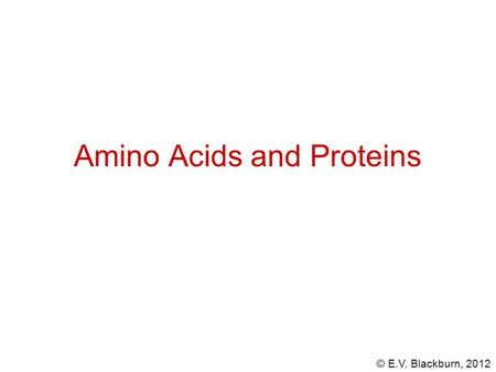 © E.V. Blackburn, 2012 Amino Acids and Proteins. © E.V. Blackburn, 2012 The hydrolysis of most proteins produces about twenty different amino acids. an.