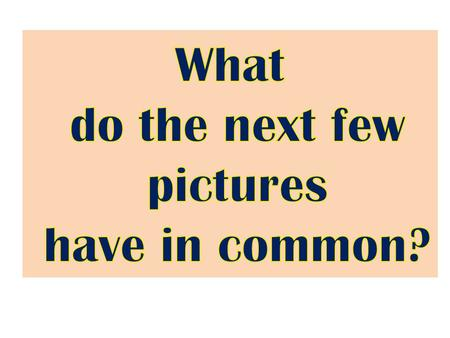 What do the next few pictures have in common?.