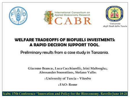 WELFARE TRADEOFFS OF BIOFUELS INVESTMENTS: A RAPID DECISION SUPPORT TOOL. Preliminary results from a case study in Tanzania. Giacomo Branca 1, Luca Cacchiarelli.