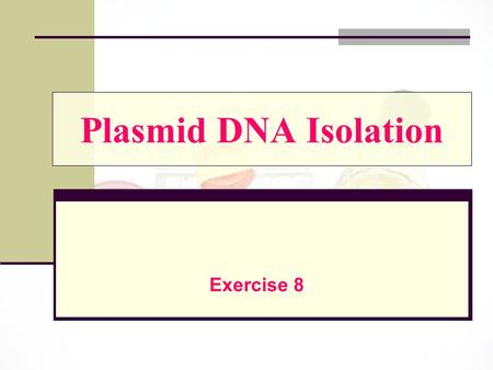 Plasmid DNA Isolation Exercise 8.