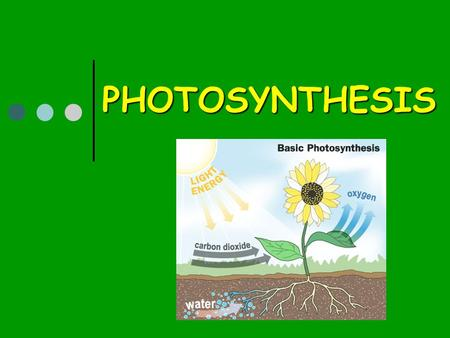 PHOTOSYNTHESIS. 2 PHOTOSYNTHESIS Process that converts light energy to chemical energy Occurs in chloroplasts of green plants (mostly in leaves) Contains.