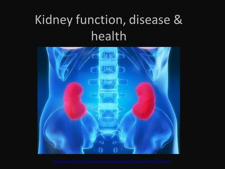 Kidney function, disease & health