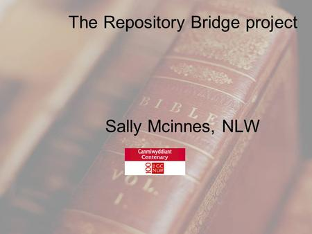 The Repository Bridge project Sally Mcinnes, NLW.