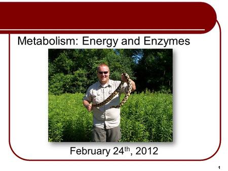 Metabolism: Energy and Enzymes February 24 th, 2012 1.